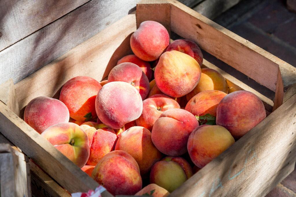 Come fruta en verano, te ayudará a mantenerte fresco y despejado